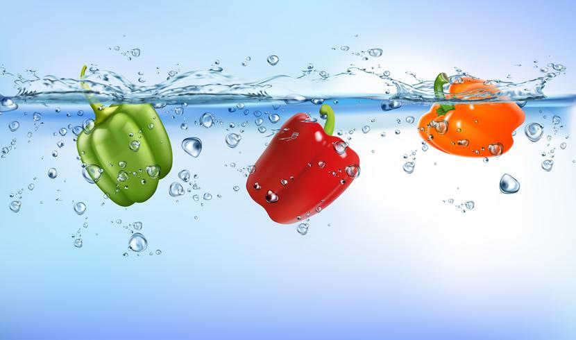 färska grönsaker stänk i blå klart vatten stänk hälsosam kost diet friskhet koncept isolerad vit bakgrund. Realistisk Vektorillustration. vektor