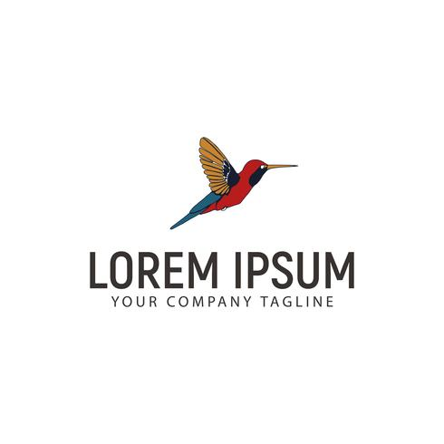 kolibri logo design koncept mall vektor