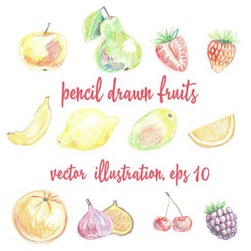 Set med blyertsdragen frukter och bär. Frihandsteckning vektor