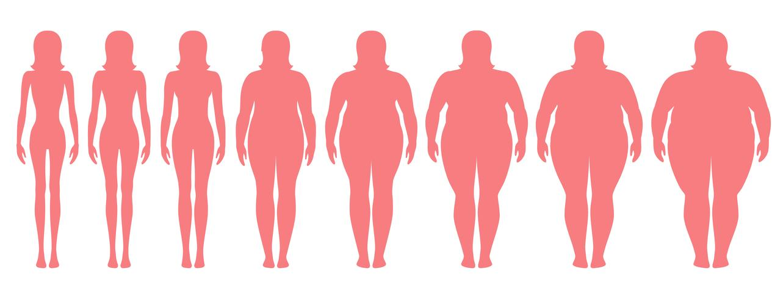 Vector Illustration von Frauenschattenbildern mit unterschiedlichem Gewicht von Magersucht zu extrem beleibtem. Body Mass Index, Gewichtsverlust Konzept.
