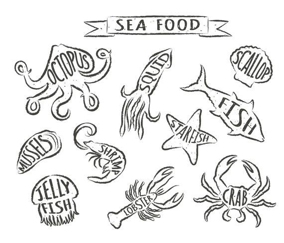Seafood handritade vektor illustrationer isolerad på vit bakgrund, element för restaurang meny design, inredning, etikett. Grunge konturer av havsdjur med namn.