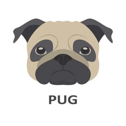 Vektorillustration von Pug in der flachen Art. vektor