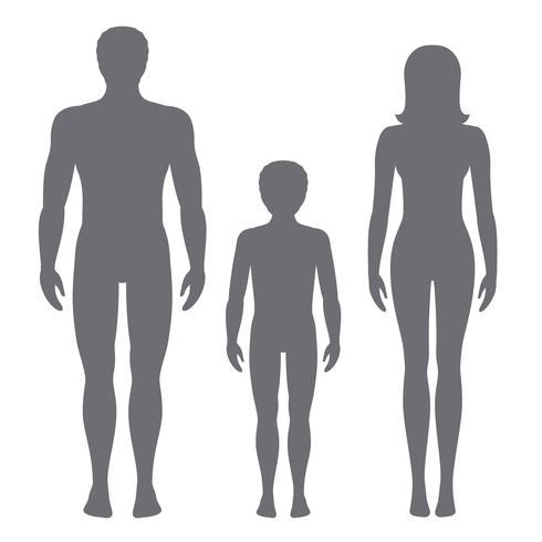 Vektor illustration av man, kvinna och barn. Kroppsandelar av mänskliga framifrån silhuetter.