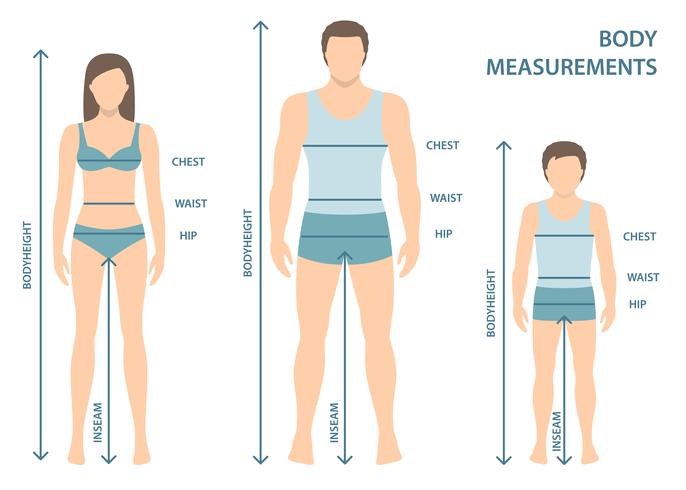 Vektor illustration av man, kvinnor och pojke i full längd med mätlinjer av kroppsparametrar. Mått på män, kvinnor och barnstorlekar. Människokroppsmätningar och proportioner. Platt design.
