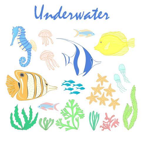 Set av undervattensdesignelement. Havsfisk. Vektor designelement havsfisk, koraller och sjögräs. Undervattensuppsättning. Sea life design elements.Set av havsdjur. Undervattens vektor uppsättning. Havsfisk set.