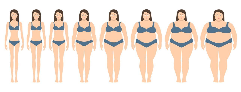 Vektor illustration av kvinnor med olika vikt från anorexi till extremt fetma. Body mass index, viktminskning koncept.