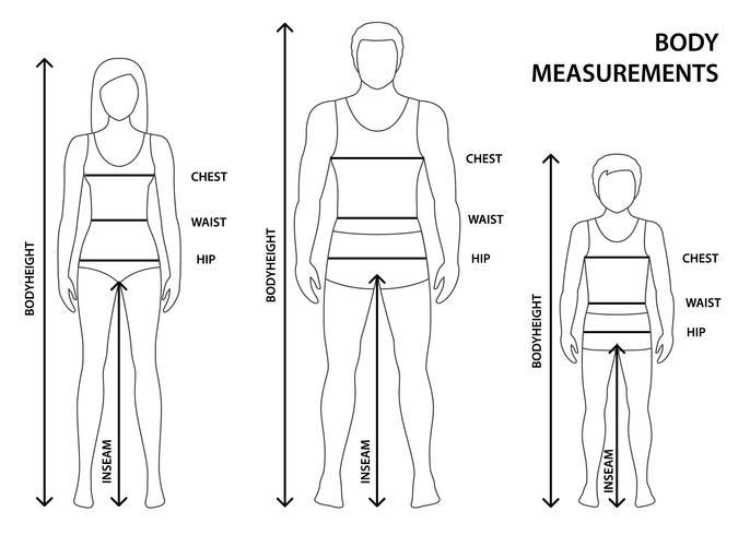 Vektor illustration av konturerad man, kvinnor och pojke i full längd med mätlinjer av kroppsparametrar. Mått på män, kvinnor och barnstorlekar. Människokroppsmätningar och proportioner.