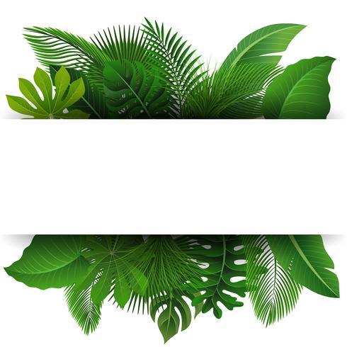 Unterzeichnen Sie mit Textraum von tropischen Blättern. Geeignet für Naturkonzept, Urlaub und Sommerurlaub. Vektor-Illustration vektor