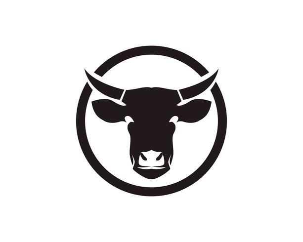 Cow head symboler och logotyp vektor mall