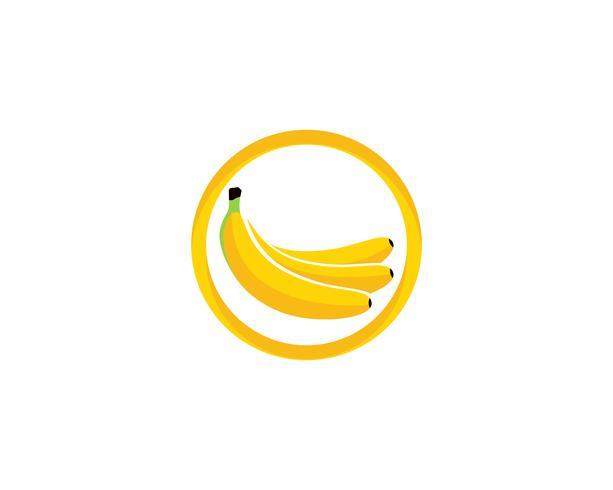 Bananan trägt Vektorschablonenlogo Früchte vektor