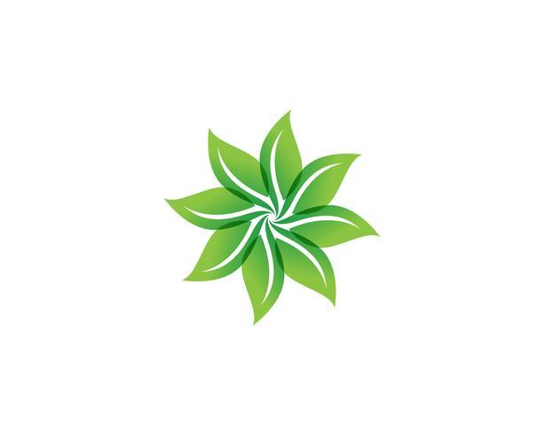 blommönster mönster och symboler vit bakgrund vektor