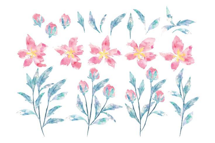 Akvarell blommig samling vektor
