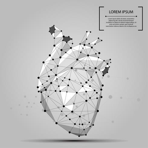 Abstrakt polygonal linje och peka mänskligt hjärta inre organ. Vektor medicin koncept mash illustration.