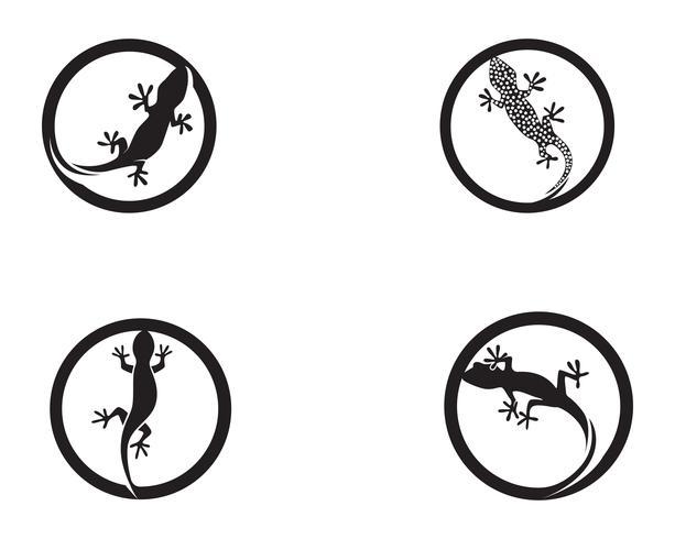 Eidechsen-Chamäleon-Gecko-Schattenbildschwarzvektor vektor
