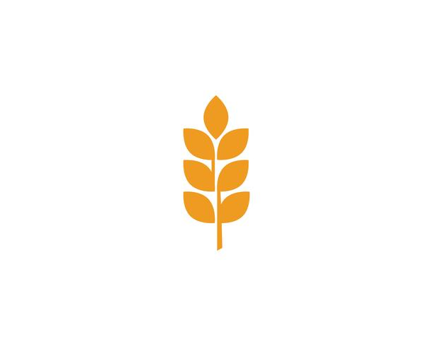 Jordbruk Vete Logos vektor
