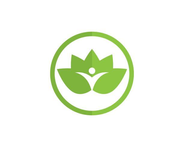 Lotus folklogotyp och symboler vektor