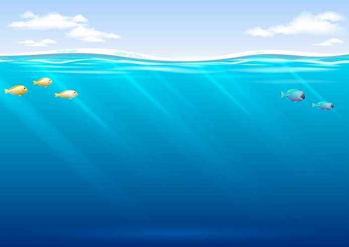 Undervattensbakgrund med tropisk fisk och himmel vektor