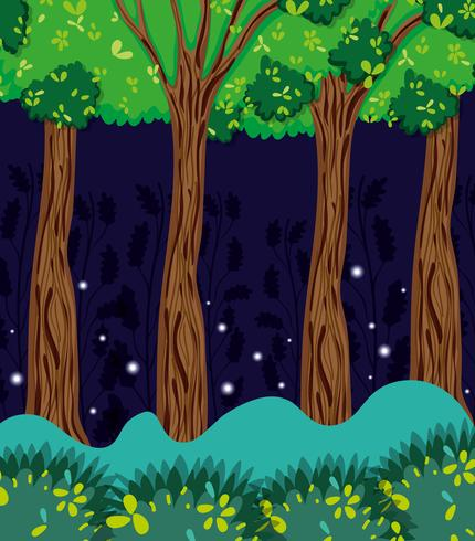 Vacker skog på natten vektor