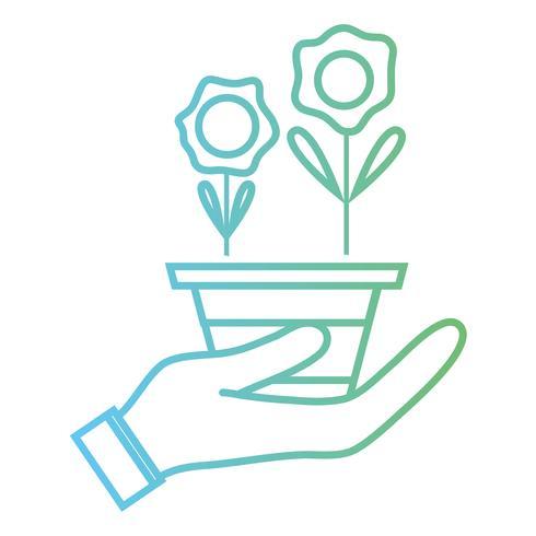 linjeblommor med kronblad och lämnar in i potten i handen vektor