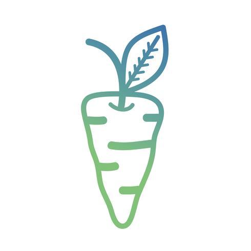 linje organisk morot vegetabilisk näring vektor