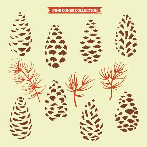 Tannenzapfen Sammlung von Weihnachtsbaum Zweigen mit Tannenzapfen und Mistel vektor