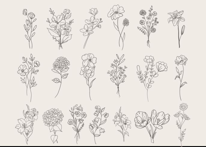 Blumen Set Gekritzel vektor