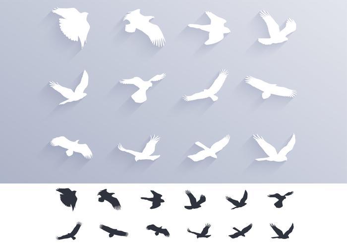 Fåglar av bjud Silhouettes Vector Pack