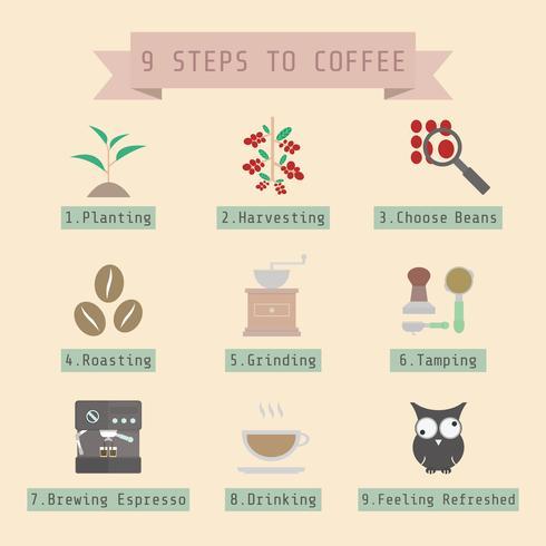 steg av kaffeprocessen vektor