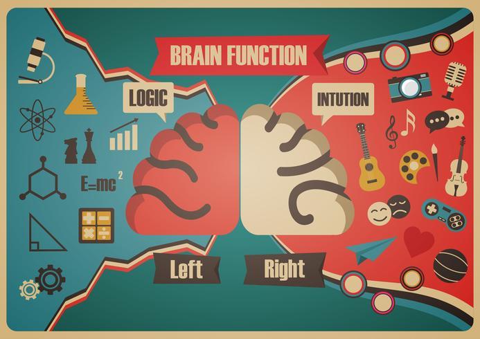 Retro Gehirn Funktionsdiagramm vektor