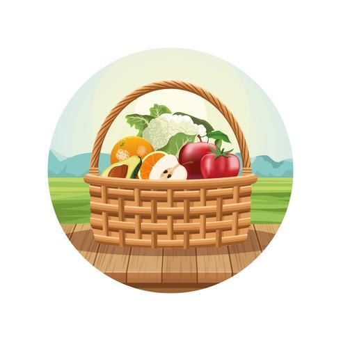 Obst und Gemüse im Korb vektor