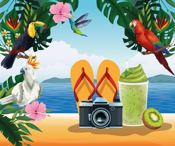 Sommarsemester och strandkarikärer vektor