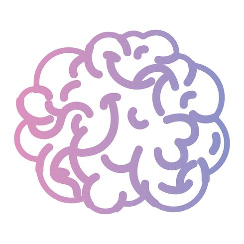 Linie menschlichen Gehirns Anatomie kreativ und Intellekt vektor