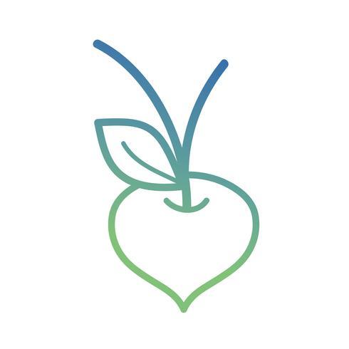 Linie Bio-Rüben-Gemüse Ernährung vektor
