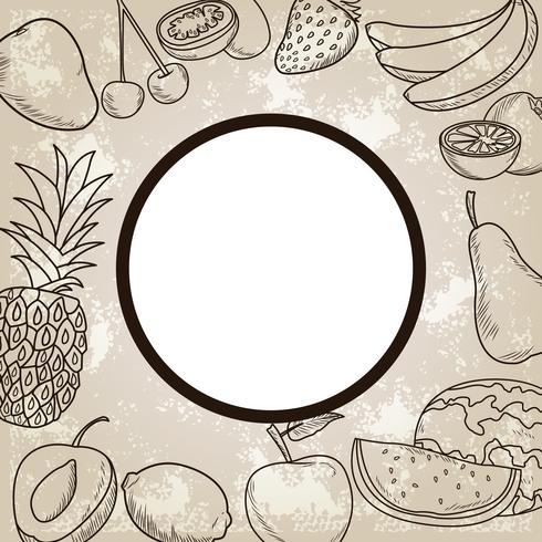 handritade frukter vektor