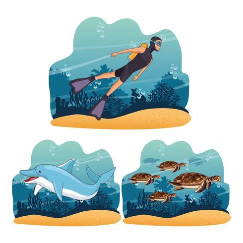 Dykning av människor i havet vektor