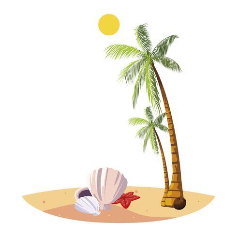 sommarstrand med palmer och skal scen vektor