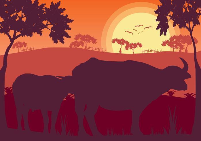 Buffel i gräsmarkänglandskap vektor