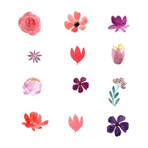Aquarell Blumen Sammlung vektor