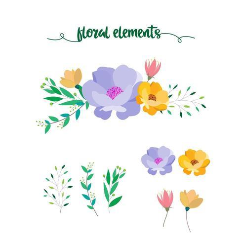 blommig element samling vektor