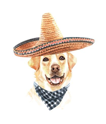 Akvarell Labrador Retriever med mexikansk hatt och halsduk. vektor