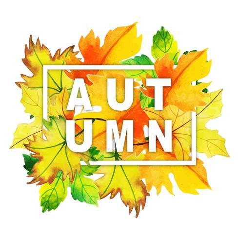 Akvarell höstenypografi med lövram vektor