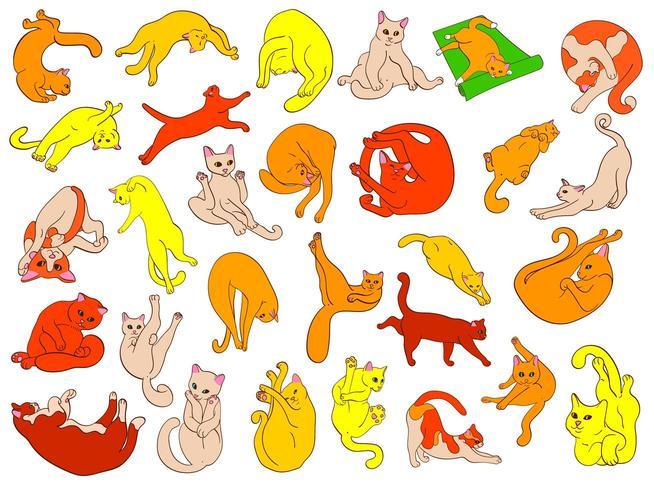 Handritade söta katter. vektor