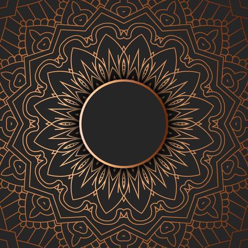 Stammes-Mandala-Design vektor