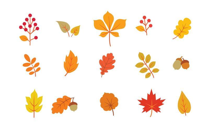 Herbstlaub eingestellt vektor