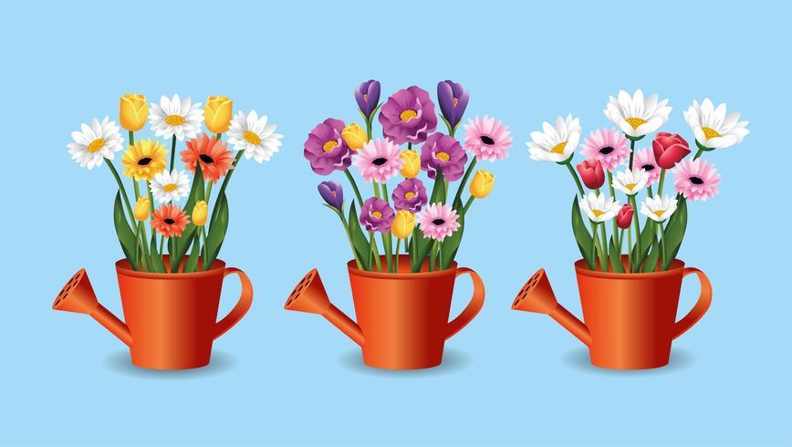 sätta blommor och rosor växter i vattenkanna vektor