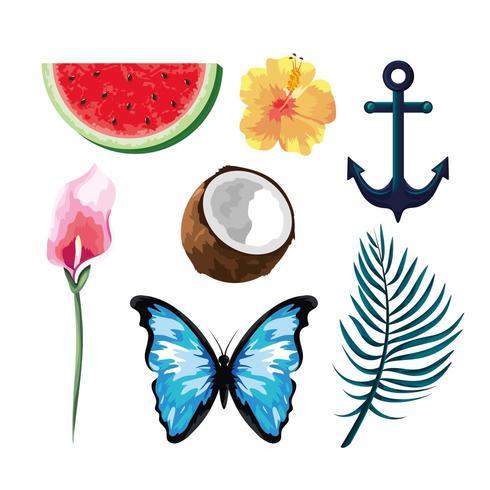 ställa in tropiska frukter med blommor och fjäril med ankare vektor