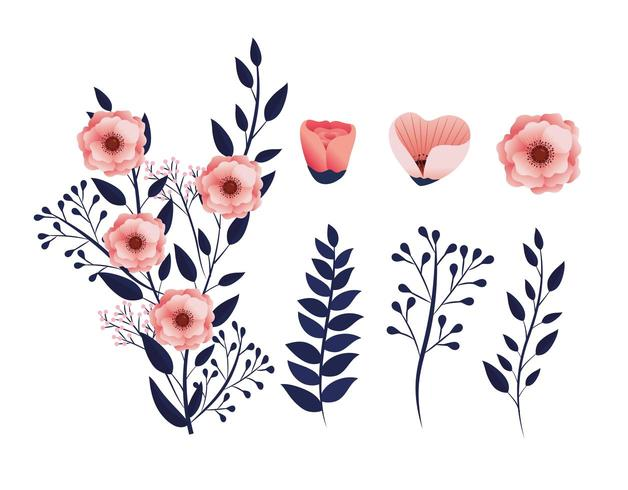 ställa exotiska blommor växter med tropiska grenar blad vektor