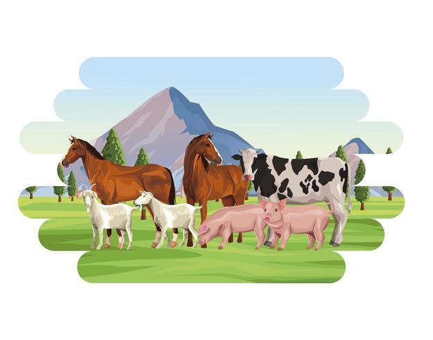 Cartoons mit Nutztieren vektor