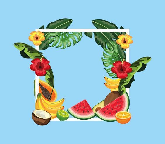 quadratischer Rahmen mit Blumen und tropischen Früchten vektor