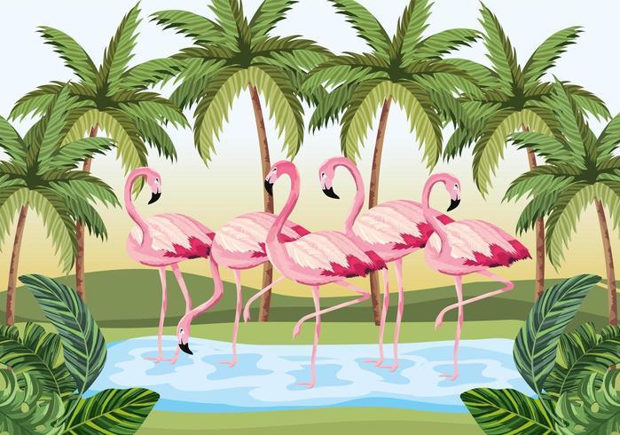 tropiska flamingo djur med palmer och blad vektor